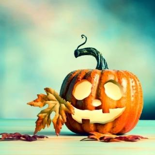 Halloween engelen kaart legging