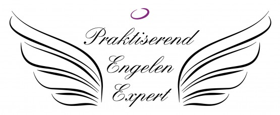 Praktiserend Engelen Expert certificering bij Engelencursus