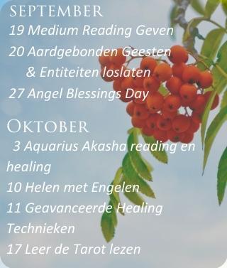 Live les via Zoom bij Engelencursus van Annelies Hoornik