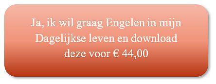 e-cursus Engelen in je dagelijkse leven van Annelies Hoornik