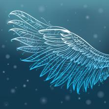 Maak kennis met de Aquarius Angels thuis online leren