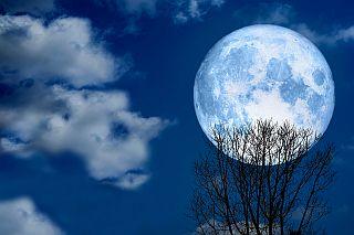 Super Volle Sneeuw Maan