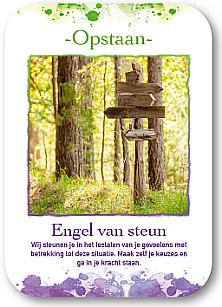 Engelen Orakel Boek en kaarten Annelies Hoornik