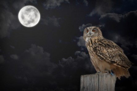 Volle maan van oktober