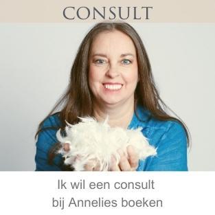Consult bij Annelies Hoornik van Engelencursus